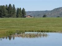 Quiet Secluded 475 Acre Ranch : Bonanza : Klamath County : Oregon