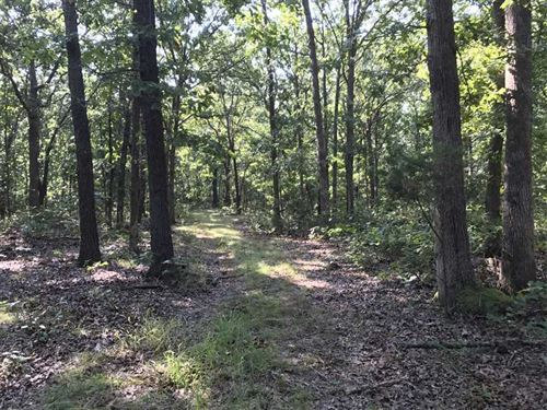 Nice Hunting Property : Iconium : Saint Clair County : Missouri