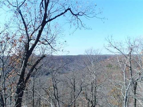 108 Acres Madison 4035 : Elkins : Madison County : Arkansas