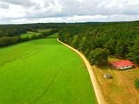 Fertile Pasture Lands And Pictures : Detroit : Marion County : Alabama