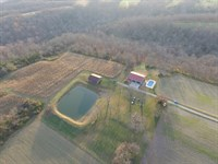 Shinkle Ridge Rd - 214 Acres : Georgetown : Brown County : Ohio