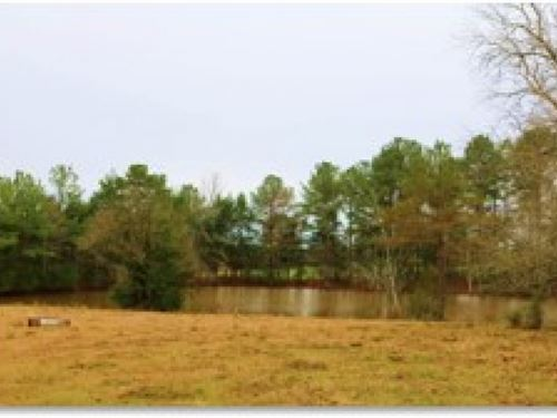 153.8 Acres In Madison County : Canton : Madison County : Mississippi