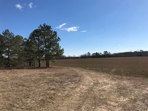 Secluded Farm - Robeson : Maxton : Robeson County : North Carolina