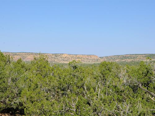 36 Acres Bordering State Trust Land : Saint Johns : Apache County : Arizona
