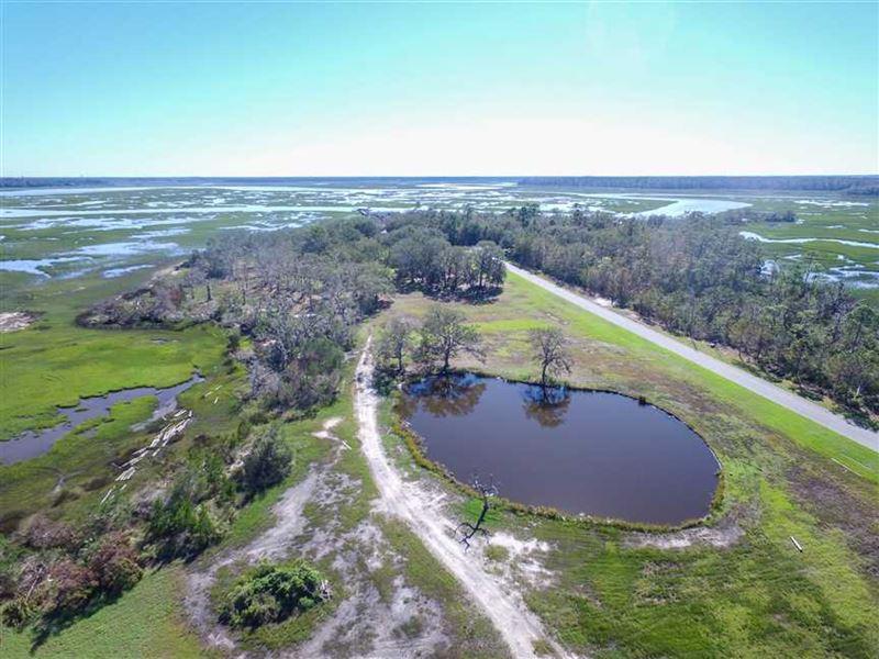 5 Acres With Pond And Big Marsh vi : Woodbine : Camden County : Georgia