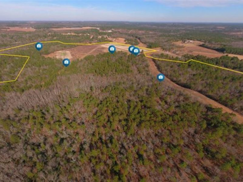 Jumping Gut Creek Recreational Prop : Ridge Spring : Aiken County : South Carolina