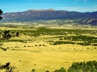 Wooded Homesite Joining Public Land : Walsenburg : Huerfano County : Colorado
