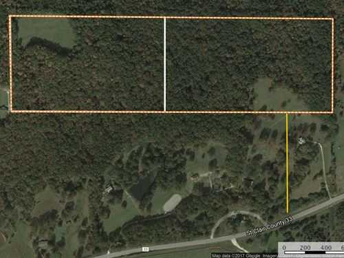 45+/- Private Wooded / Pasture : Ashville : Saint Clair County : Alabama