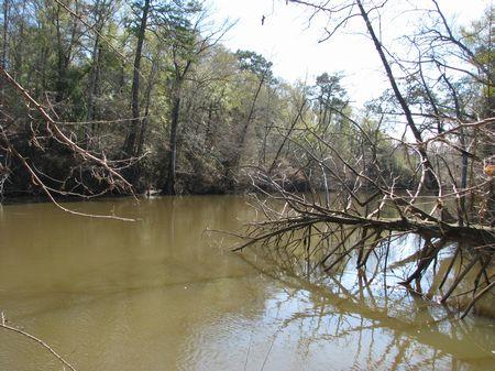Sepulga River 186 : Evergreen : Conecuh County : Alabama