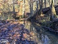 Shawnee Tract : Camden : Wilcox County : Alabama