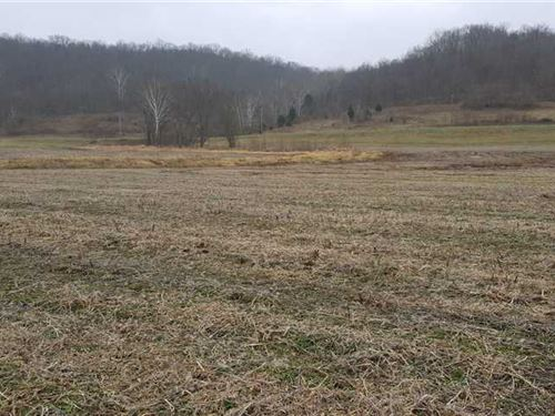 193 Acres Mixed Cropland And Recre : Aurora : Ohio County : Indiana