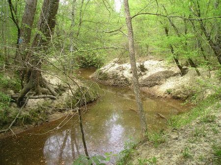 Perote : Union Springs : Bullock County : Alabama