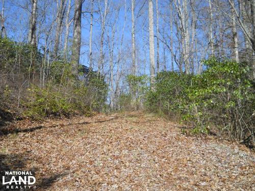 Great Views in The Smoky Mountains : Brevard : Transylvania County : North Carolina