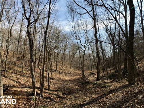 Rolling Timber Hunting Tract : Tiff City : McDonald County : Missouri