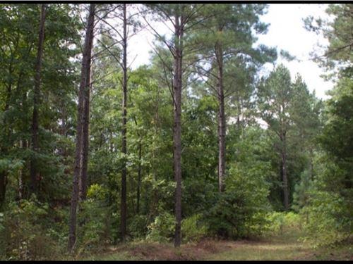 119 Acres In Attala County : Kosciusko : Attala County : Mississippi