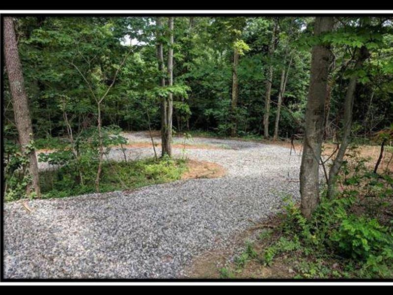 Nelson Woods : Lucasville : Scioto County : Ohio