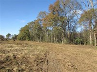 9 Acres North of Moultrie, GA : Moultrie : Colquitt County : Georgia