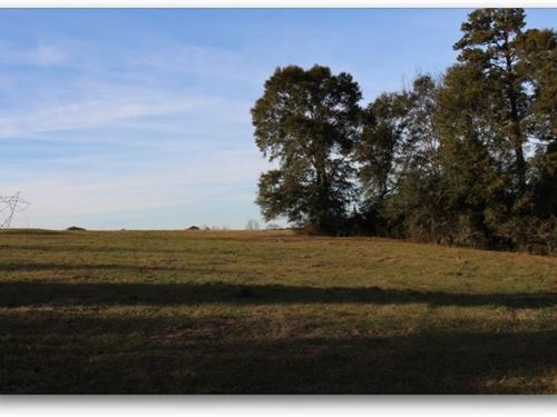 60 Acres In Walthall County, Ms : Tylertown : Walthall County : Mississippi