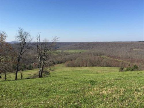 300 Acres With Food Plots, Bui : Marshall : Searcy County : Arkansas
