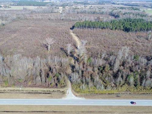 Reduced, 93 Acres of Developmenta : Greenville : Pitt County : North Carolina