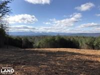 Johns River Road Hunting And Timber : Morganton : Burke County : North Carolina