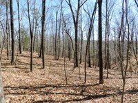 20.50 Acres Near Russellville, Ala : Russellville : Franklin County : Alabama
