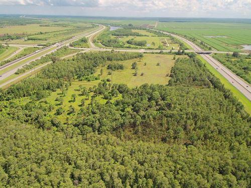 Prime Acreage In Martin County : Martin : Florida
