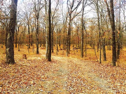 Kimberly Road at Greenwood, Caddo : Greenwood : Caddo Parish : Louisiana