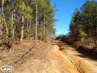 Farm OR Timber Tract : Broadway : Harnett County : North Carolina