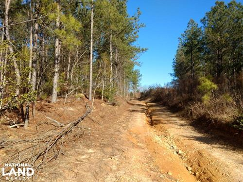 Fox Hunters Lane : Broadway : Harnett County : North Carolina
