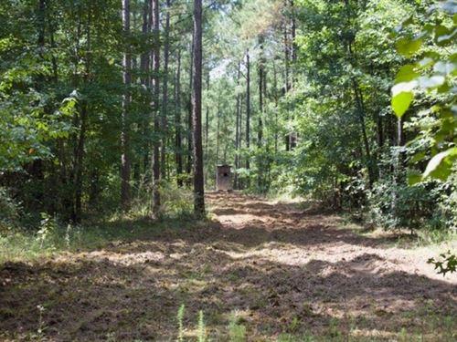 160 Acre In Attala County : Kosciusko : Attala County : Mississippi