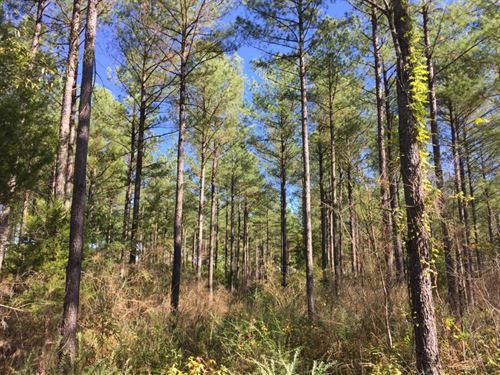 Ferree Farm : Polkton : Anson County : North Carolina