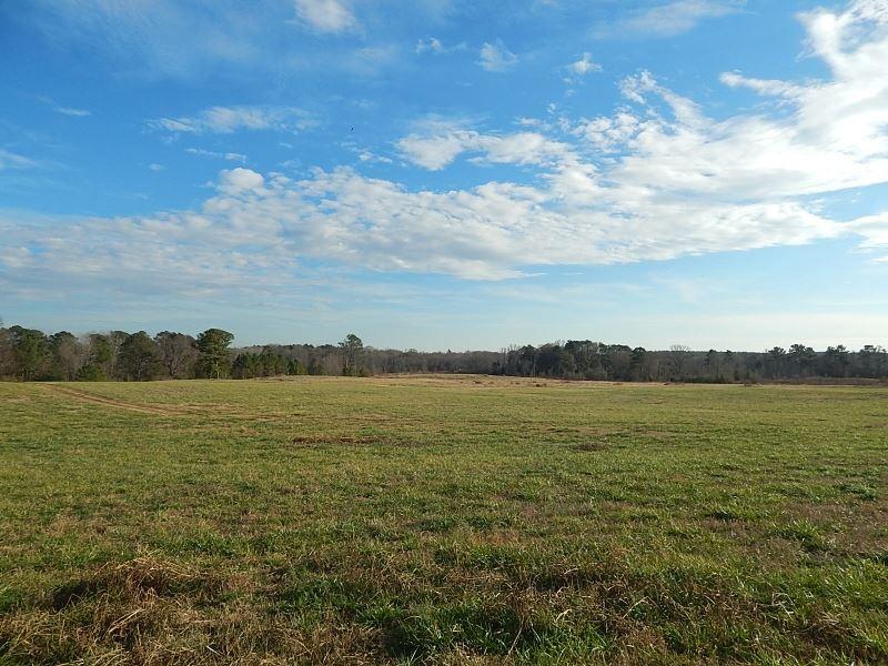 Sandy Creek Gentlemen's Farm : Madison : Morgan County : Georgia