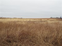 Grass Pastures And Cattle Equipment : Isabella : Oklahoma County : Oklahoma