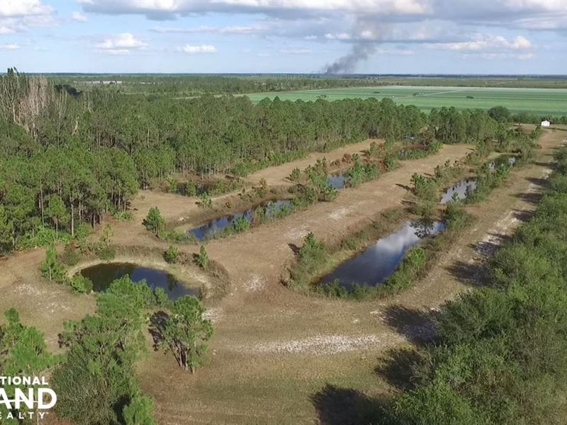 10 acre fish farm charlotte county farm for sale punta for Fish farms in florida