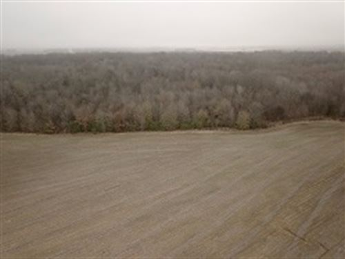 Sly/Gates 163 +/- Acres : Moro : Lee County : Arkansas