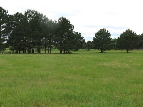 96 Acres North Anderson County : Palestine : Anderson County : Texas