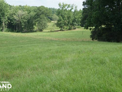 Homesite, Pasture And Timber Invest : Gordo : Pickens County : Alabama
