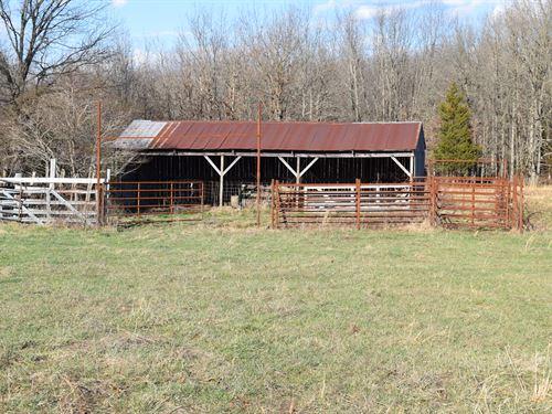 80 Acres - Cattle Ground : Salem : Dent County : Missouri