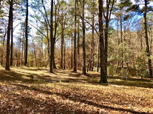 Beautiful Prime Hunting Land : Woodville : Wilkinson County : Mississippi