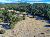 Near Public Land & National Forest : Grants : Cibola County : New Mexico