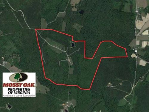 170 Acres of Recreational Hunting : Keysville : Charlotte County : Virginia