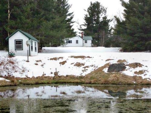 Woodland Cottage On Birch Stream : Alton : Penobscot County : Maine