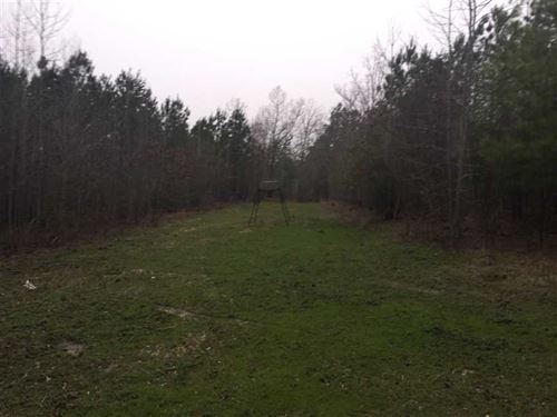 This Property Offer Great Deer And : Kosciusko : Attala County : Mississippi