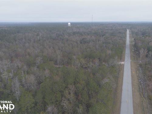 Old Ccc Road Estate : Brunswick : Glynn County : Georgia