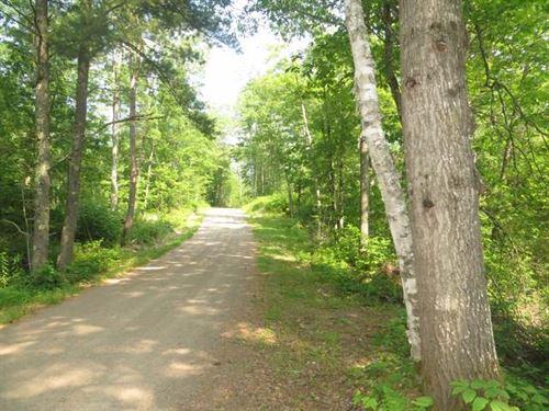 Mls 169090 - 5.5+ Acre Parcel : Lac Du Flambeau : Vilas County : Wisconsin