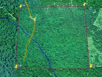 40 Acres With Easy Access, Clearing : Gentryville : Douglas County : Missouri
