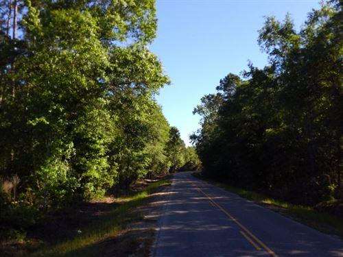 Knox South : Dothan : Houston County : Alabama
