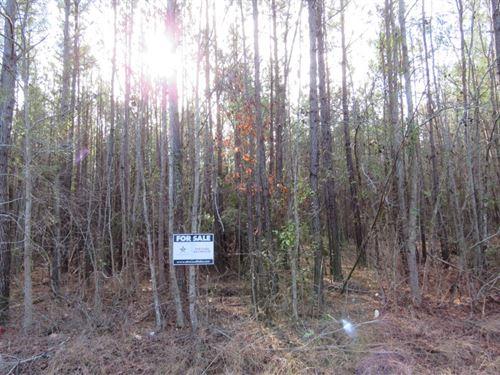 Cannon Bridge Tract 2 : Orangeburg : South Carolina