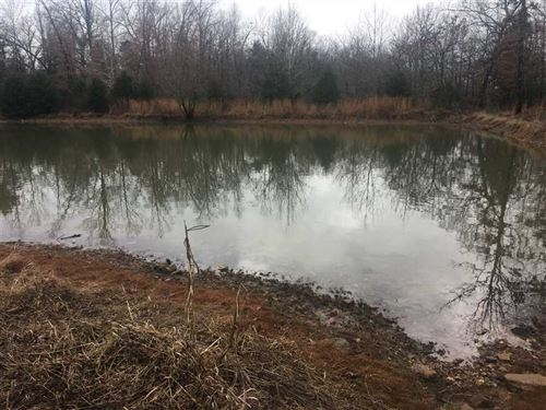 111 Acres Prime Hunting : Poughkeepsie : Sharp County : Arkansas